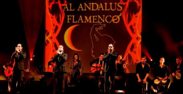 flamenco-111779